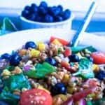 Spinach, Farro, and Blueberry Salad with simple lime vinaigrette