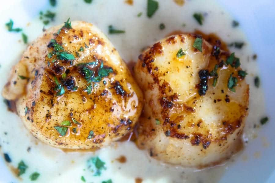 Seared Scallops with Pear Cream Sauce