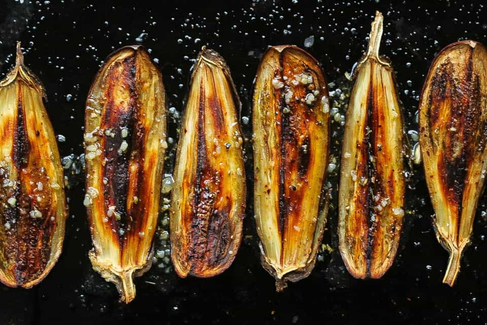 roasted eggplant on a pan